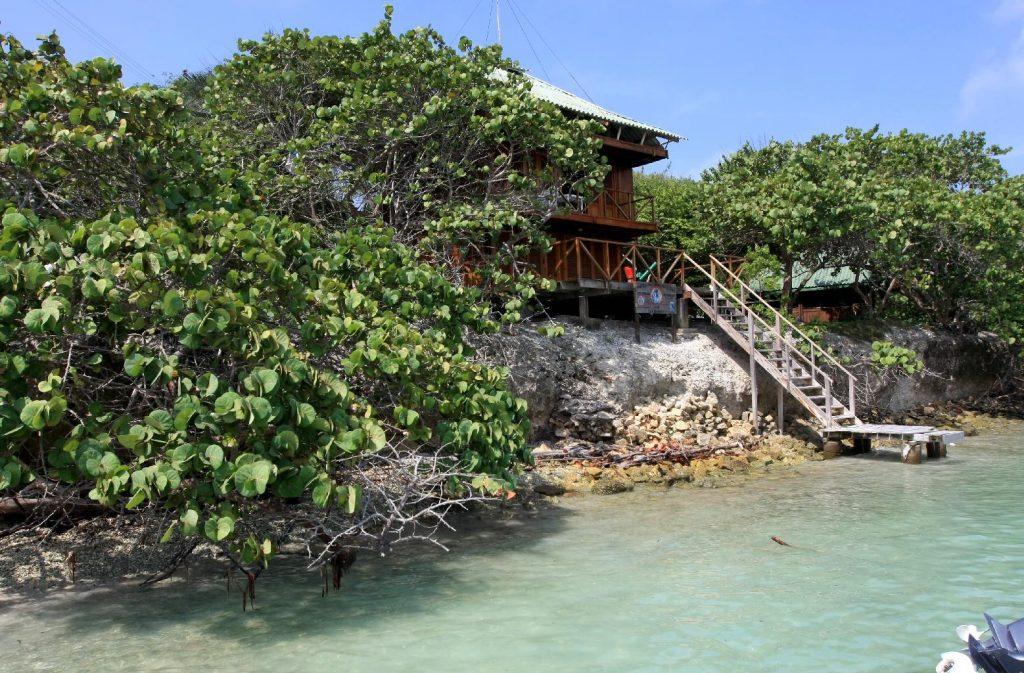 Manglar y aguas cristalinas de Isla Grande