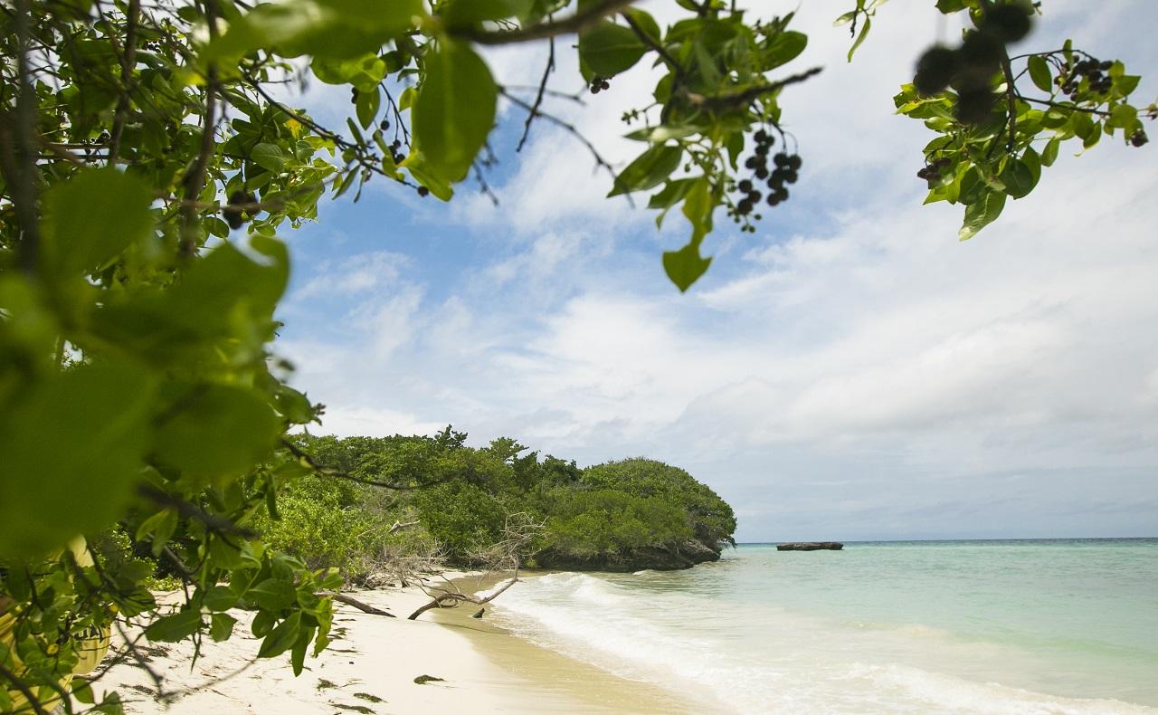 Turismo en Cartagena, turismo ecológico, Islas del Rosario