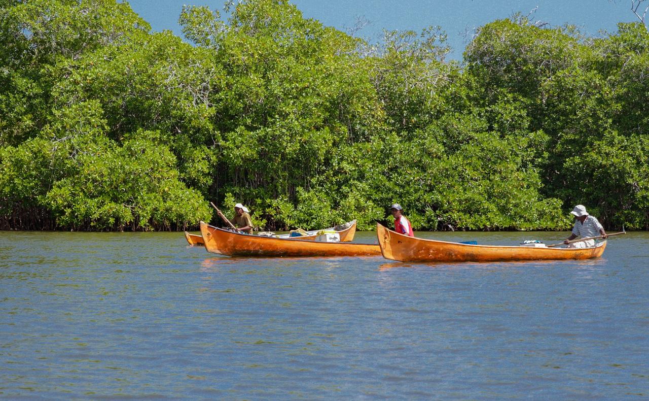 pescadores en canoas en Ararca, Barú, Cartagena